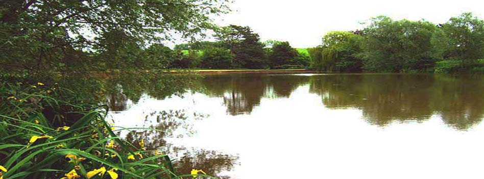 Evesbatch Old Lake